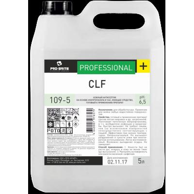Антисептик PRO-BRIT CLF 5 литров канистра